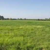 Weilanden nabij LC Energy Zonneveld Wijkerbroek